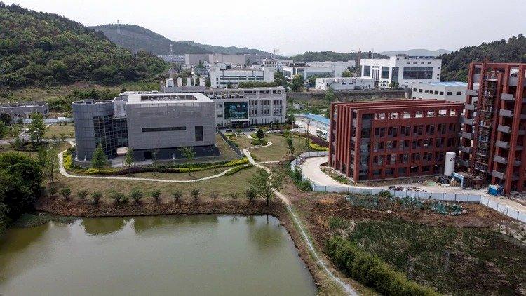 Viróloga china advirtió de posible virus ligado a murciélagos casi un año antes de que se detectara el Covid-19