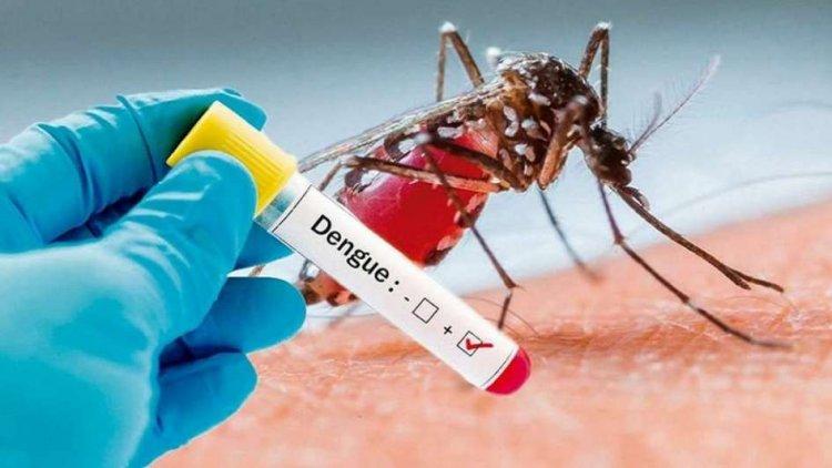 SP asegura letalidad por dengue ha aumento en RD