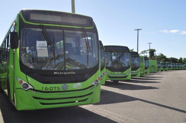 OMSA extenderá horario de servicios de transporte a partir del 27 de enero